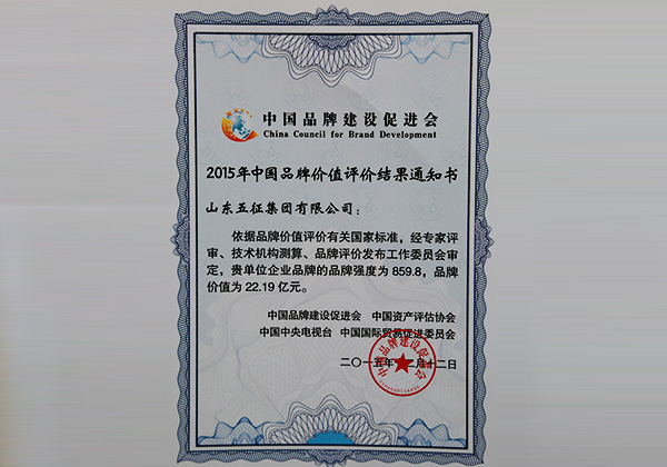 Wuzheng, Listed as the No. 8 Manufacturing Brands among All 183 Selected and Listed from Thousands of Brands All over China from CCTV-2
