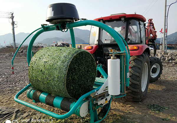 The New Technology of Wuzheng Adds Value to Forage Crops